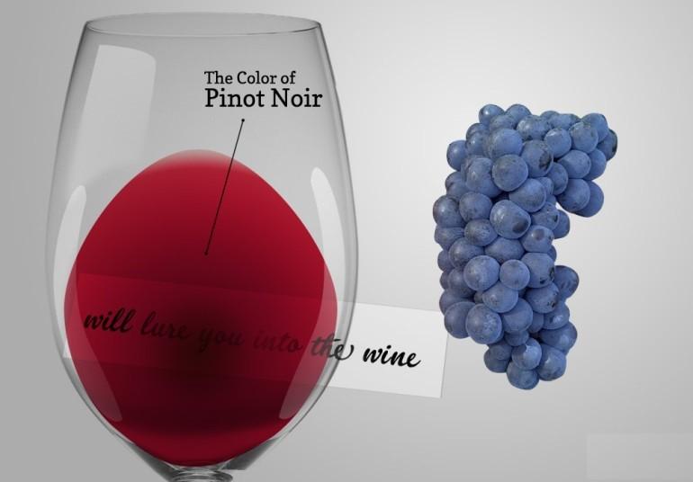 Грозде Пино ноар | Pinot noir