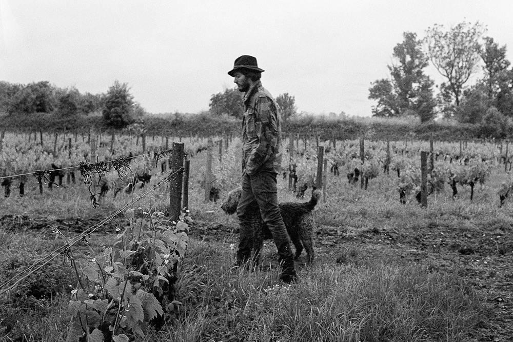 Винопроизводител от Бордо