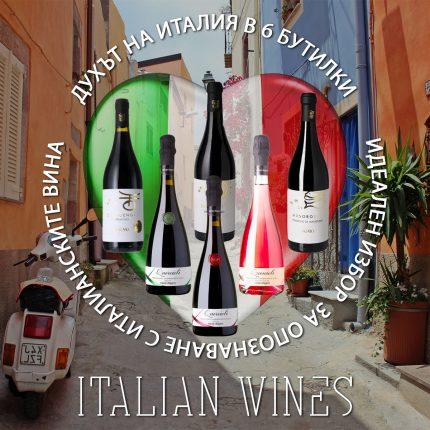 Промо кашон Италианско вино