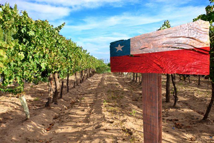 Чилийски вина запознанство